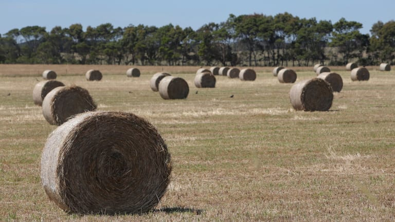 With extreme heat and a northerly wind predicted, there are concerns fires could be started by spontaneously combusting hay bales.