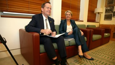 Opposition Leader Bill Shorten announced late on Tuesday that he will introduce a private member's bill on same-sex marriage next week. His deputy Tanya Plibersek will co-sponsor it.