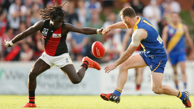Anthony McDonald-Tipungwuti of Essendon and Ed Carr of Williamstown compete for the ball.