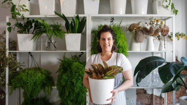 Planted is the new indoor plant delivery service from Renee Douros, who also runs The Floral Society and The Sugar Deli.