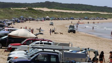 Vehicles line up along the dunes after paying a $30 fee.