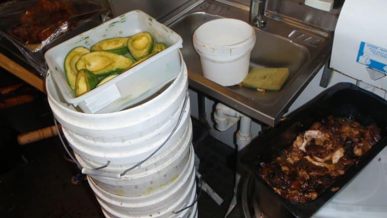 Brisbane City Council Food Safety Complaint