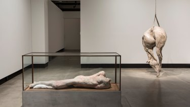 Berlinde De Bruyckere's sculptures <i>Lange eenzame man</i> (2010) and <i>P XIII</i> (2008) at MONA in Hobart.
