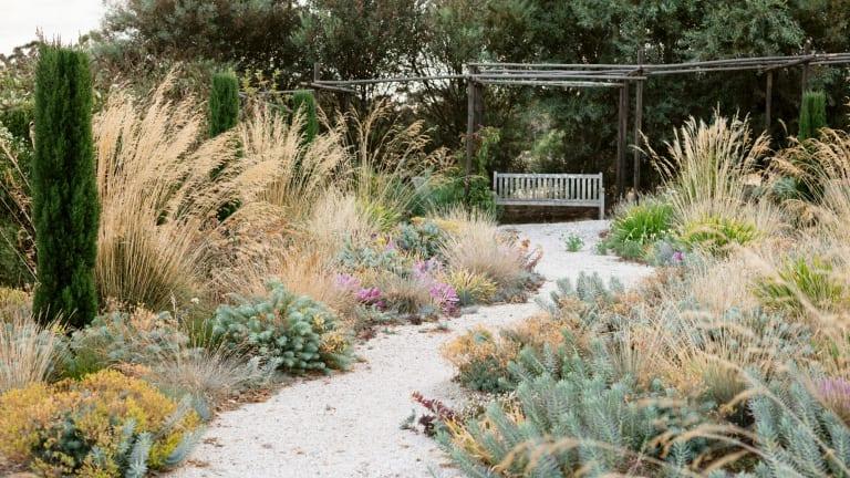 Designer and plantsman Michael McCoy's Woodend garden.