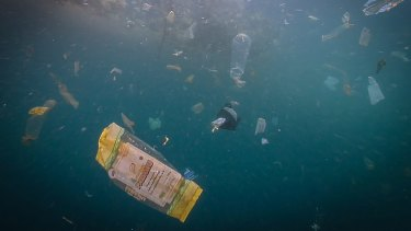 Holden juxtaposes beautiful marine scenes with images of their pollution and destruction.