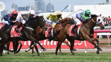 Prince of Penzance wins the Melbourne Cup.