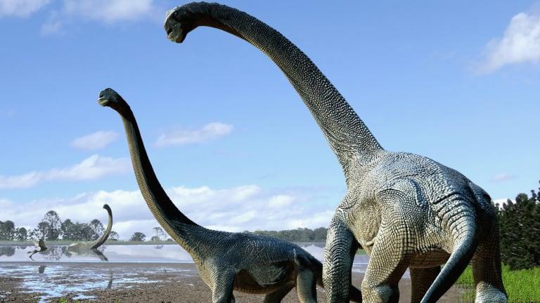An artist's impression of the new dinosaur, Savannasaurus elliottorum.