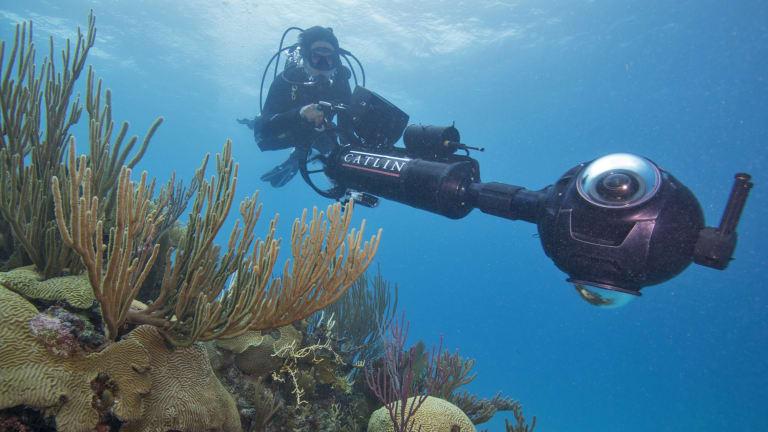 Dr Manuel Gonzales-Rivero surveys coral in Bermuda.