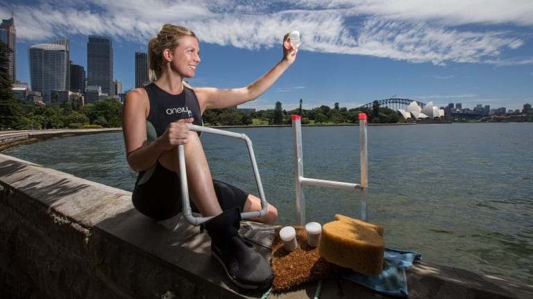 Starfish, crabs, algae and smaller fish varieties could all be lured by 60 concrete pots installed along seawalls of the Sydney Harbour foreshore.
