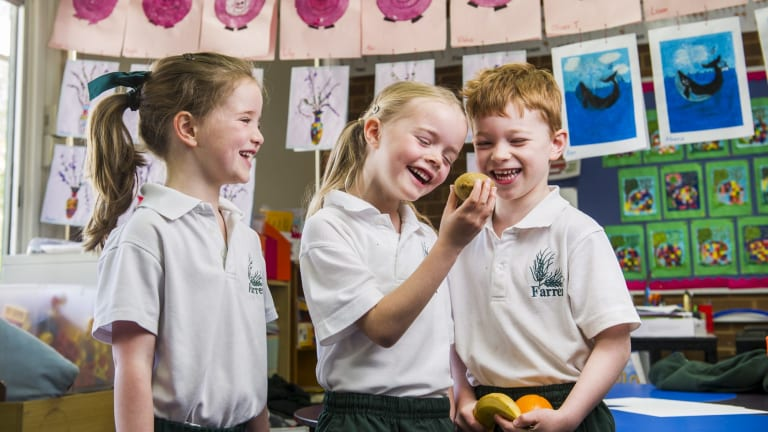 Farrer kindergarten pupils Elsa Connell, Grace Evans  and Oliver Turnbull discuss the merits of a kiwi fruit for lunch.