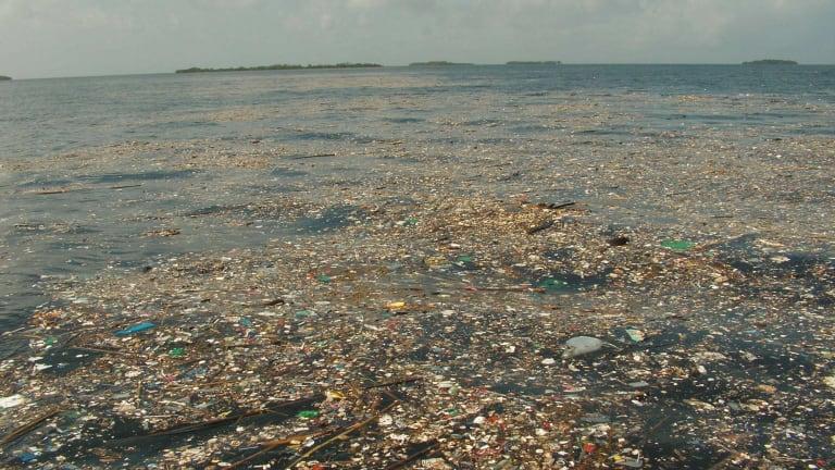 Marine debris in Port Honduras Marine Reserve, Belize.