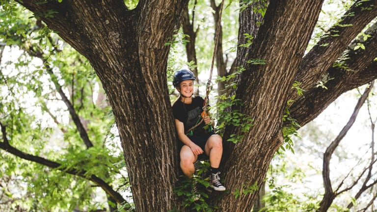 Canberra United striker Maddy Whittall cuts through W-League defences and trees working as a part-time arborist.