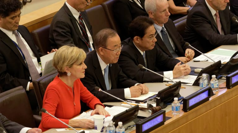 Minister for Foreign Affairs Julie Bishop at a Friends of the Comprehensive Test Ban Treaty meeting at the UN.