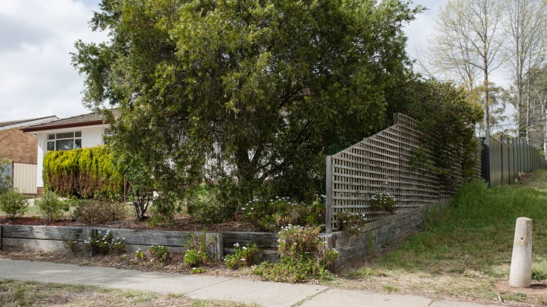The far end of the property's concrete fence had now been replaced.