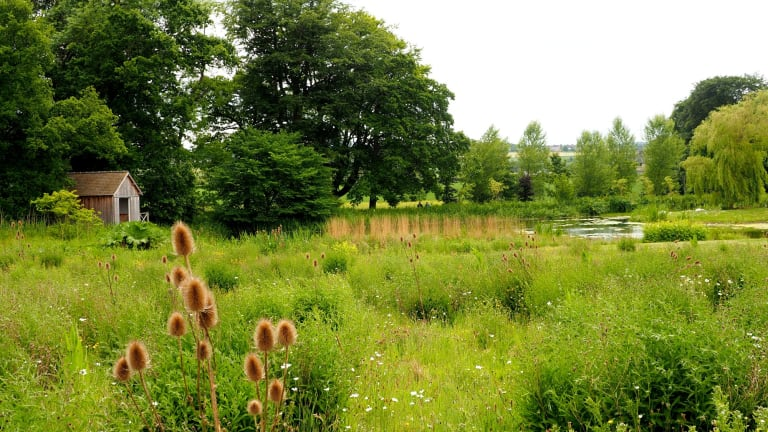 At Jupiter Artland, the artwork is in fascinating dialogue with landscape and garden.