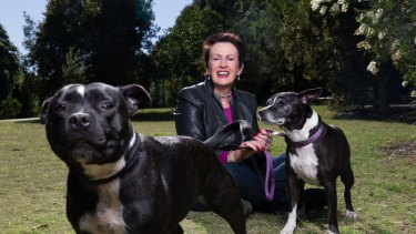 Sydney lord mayor Clover Moore, with her dogs Buster and Bessie in Sydney Park, is keen for another term in office.