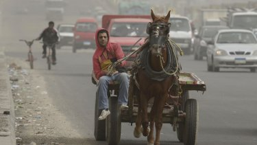 An Egyptian rides his horse cart in Cairo, Egypt, during a sandstorm last week.
