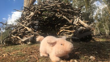 A toy pig guards the Ainslie stick house.