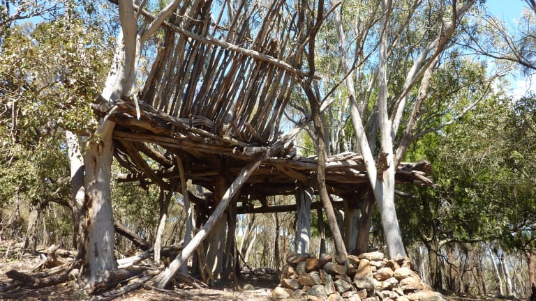 Mt Majura Treehouse prior to demolition in 2012.
