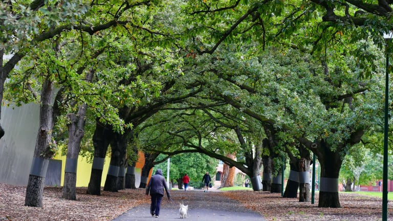 Access to green space makes Melbourne a drawcard.