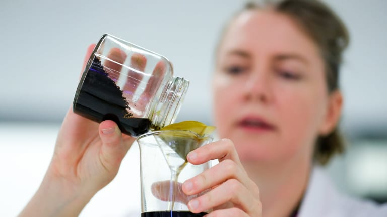 Olfactory artist Cat Jones mixed dilutions to create 10 special scents of Sydney.