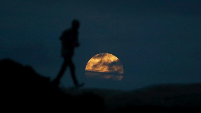 The best view Sydney got: A man walks as the moon rises near Bondi beach before the super blue blood moon full eclipse.