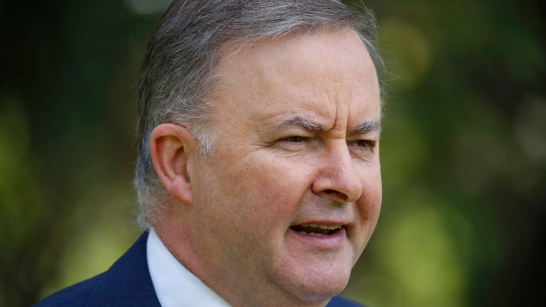 Labor's transport and infrastructure spokesman Anthony Albanese.