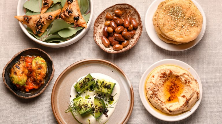 Veg deg: the opening flurry of vegetarian dishes includes zucchini flower dolmades and hummus.