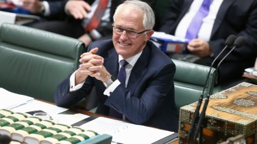 Malcolm Turnbull has been described by a former Liberal leader, and medical doctor, Brendan Nelson, as a clinical narcissist.