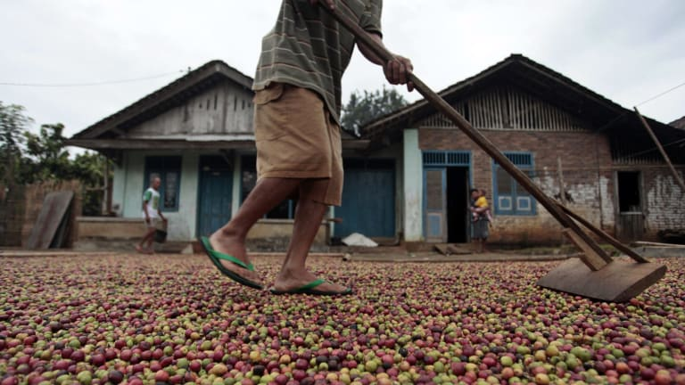 2014 global consumption of coffee topped 8940 million kilograms.