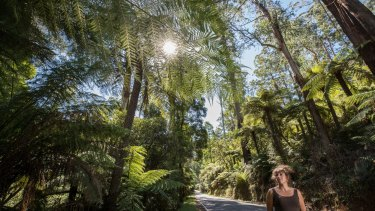 Deanne Eccles, owner of the Strathvea Guest House, says a Great Forest National Park would boost the economy.