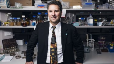 Dr Marshall believes the CSIRO is on to a winner with its research into what causes obesity.