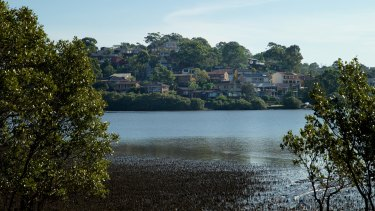 Serene and toxic: High levels of pollutants have been found in Oyster Bay sediments.