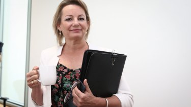 Health Minister Sussan Ley said the location rules and other pharmacy regulation and remuneration arrangements would be reviewed over the next two years.