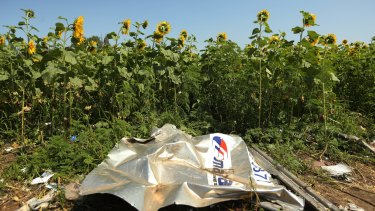 Atrocity: Plane debris from the MH17 sits among sunflowers in a field in Ukraine's Donetsk province. Fairfax journalist Paul McGeough and photographer Kate Geraghty went to the crash site at dawn to quietly collect seeds from sunflowers to smuggle them back to Australia.