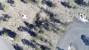 Land-clearing north of Moree in NSW.