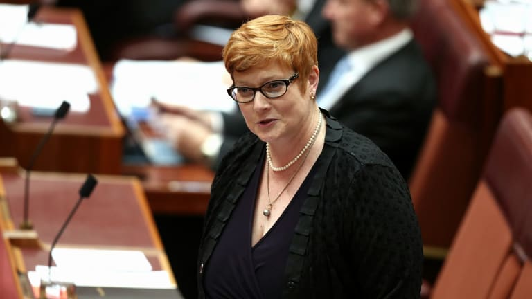 Senator Marise Payne has been named Australia's first female Defence Minister in Malcolm Turnbull's cabinet reshuffle.