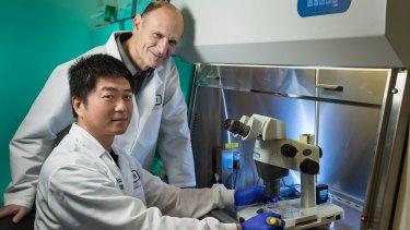 Dr Jun Wu (seated) and Professor Juan Carlos Izpisua Belmonte.