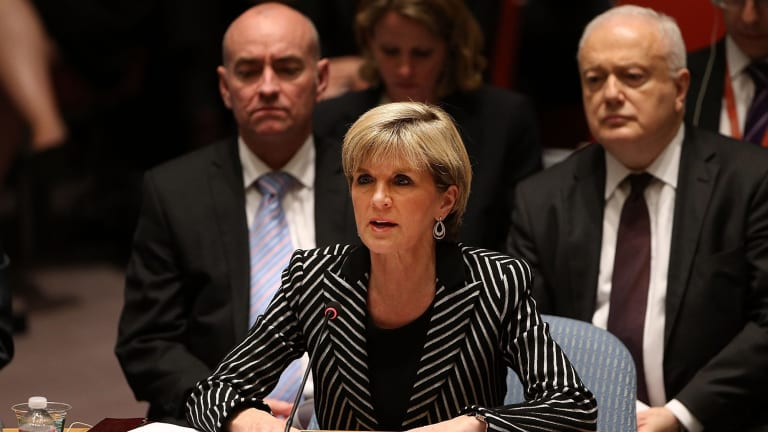 Australia's Foreign Affairs Minister, Julie Bishop, speaks during a meeting of the United Nations Security Council to discuss the shooting down of Flight MH-17.