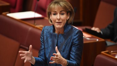 Minister for women Michaelia Cash said public servants have enough access to leave if they are victims of abuse in the home.