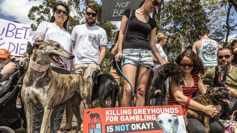 Protesters argued a new greythound racing track could perpetuate animal cruelty and add to Logan's gambling problems.