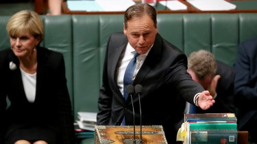 "One of Environment Minister Greg Hunt's key points was that Australia will ""meet and beat"" – he said the phrase seven times – our 2020 emissions targets."