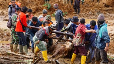 Rescuers help lift a cow trapped in the mud.