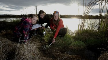 At the Jerrabomberra Wetlands, Frog Watch co-ordinator, Anke Maria Hoefer of Page, right, takes a temperature reading with the help of volunteers, Kelly Bateup 9 left and Olivia Bateup 10 both of Fadden.