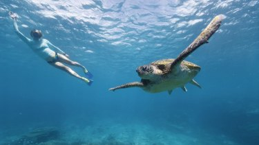 The World Heritage status of the Great Barrier has been confirmed - for now.