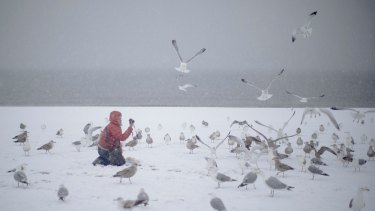 A woman photographs seagulls on the beach on New York's Coney Island during a snow storm on Friday.