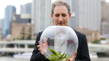 World Science Festival founder Brian Greene with the spider, Dolomedes briangreenei.
