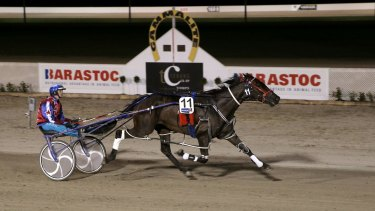 Arden Rooney easily wins the Terang Pacing Cup.