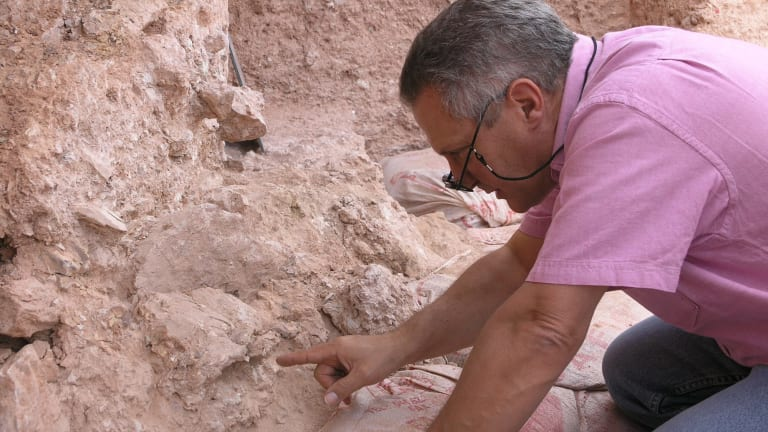 Dr Jean-Jacques Hublin with a new find at Jebel Irhoud - a crushed human skull.