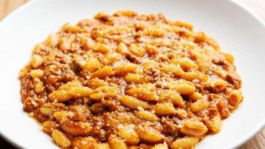 Gnocchetti-like Sardinian malloreddus shells with pork sausage ragu and pecorino.